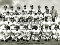 Baseball AAA PCL 1970 Hawaii Islanders Team Photo Black & White 8 X 10 Photo