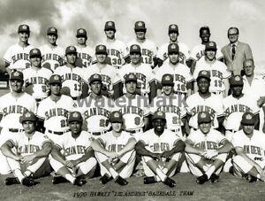 Baseball AAA PCL 1970 Hawaii Islanders Team Photo Black & White 8 X 10 Photo