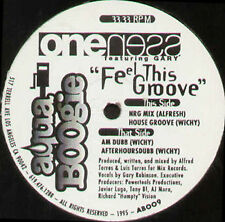 ONE NESS  - Feel This Groove - aqua boogie