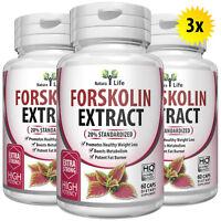 3 x BOTTLES 180 Capsules 2000mg Daily FORSKOLIN Pure Coleus Forskohlii extract