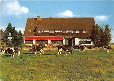BG10435 cow vache cafe sonnenschein bad oeynhausen types   germany