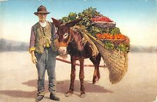 B95758 costumi napoletani donkey types folklore costumes italy