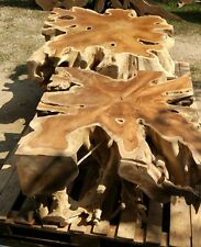 Solid Teak Root Square Coffee Table 31L 31W 17H Natural Indonesian Teak Wood