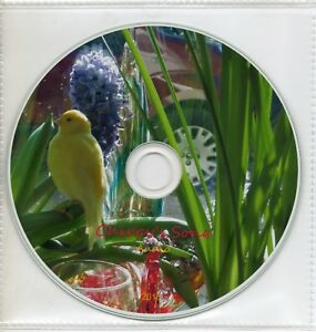 """Canary Bird Songs on CD """"Chirpy 2014"""" audio or mixed canaries mp3 version UK"""