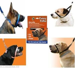 BEST TRAINING COLLAR ON THE MARKET BY CANNY COLLAR ALSO MATCHING LEADS AVAILABLE
