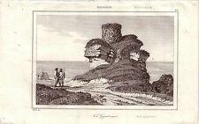 Australia Australien Nid Gigantesque giant nest Orig Stahlstich 1850 Danvin