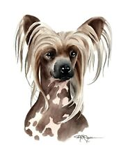 Chinese Crested Dog Watercolor Painting 8 x 10 Art Print by Dj Rogers w/Coa