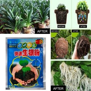 New 1 Powder rooting Plant Rapid Rooting Agent Hormone Growing Root Seedling