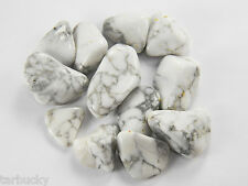 "1/4 lb HOWLITE  Large 1""+ Bulk Tumbled Stone Metaphysical Healing 4 oz FS"