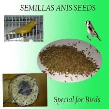 40 grammes ANIS chardonnerets linotte mélodieuse canari sauvage perruche graines