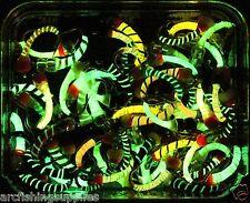 GLOW-IN-THE-DARK, Epoxy, Buzzer, Trout Fly Fishing, Flies Hook size12 X 20 Flies
