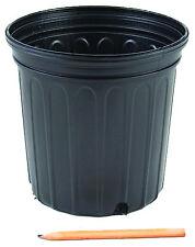 """200 Count 2 Gallon Trade Nursery Pot 8.5"""" Deep"""