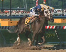 Tabasco Cat 1994 Preakness Stakes Signed 8x10 Photo Pat Day