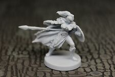 Valkyrie #019 Blood Rage miniature NEW! Viking Saga Dungeons & Dragons 28mm