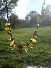 Collier Chamanique en Ambre Baltique Multicolore Naturelle ( Lituanie)  38 cts