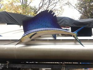 "Gulf Of Mexico Caught 101"" Atlantic Sailfish Taxidermy Wall-Mounted"