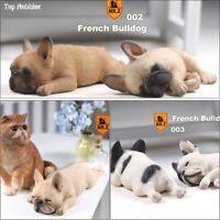 1/6 French Sleeping Bulldog Model Resin Animal Dog Pet Model For 12'' Figure