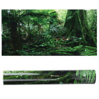 Reptile Background PVC Poster Rainforest Terrarium Fish Tank Decorations