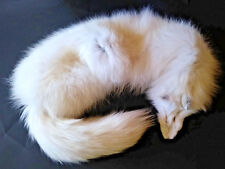 """ARCTIC FOX STOLE Genuine Fur Wrap, 41"""" Long, Head and Tail EXCELLENT Condition!"""