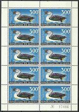 Senegal Oiseau Canard à Bosse Knob Billed Duck Bird Hockerglanzgans Vogel **1968
