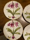 """ANNA WEATHERLEY """"FLOWERS OF YESTERDAY"""" NEW DINNER PLATES (SET OF 8)"""