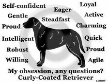 Curly Coated Retriever Dog Obsession? T-shirt Grey Size Large one only