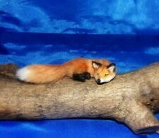 Red fox Dollhouse realistic OOAK miniature 1:12 handsculpted handmade IGMA cat