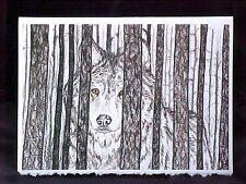 "Wolf Card Wolf in Woods Art Print Card Frameable Blank Card 5"" x 7"""