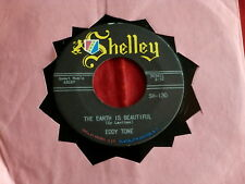 EDDY TONE~THE EARTH IS BEAUTIFUL~ GUAGLIONE~ ~ MINT~ STORE STOCK~RARE  ~ TEEN 45