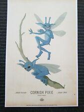 Harry Potter Wizarding World Art Cornish Pixie Poster Print 11x17