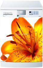 Adesivo Lavastoviglie Decocrazione Elettrodomestici Fiore Ref 222 60x60cm