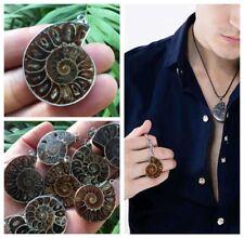 Natural Hot Madagascar Sea Druzy Ammonite Slice Shell Gemstone Pendant