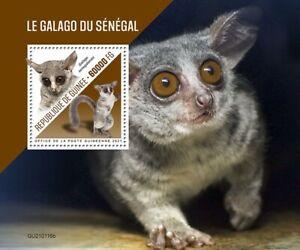 Guinea Wild Animals Stamps 2021 MNH Senegal Bushbaby Bush Babies Primates 1v S/S