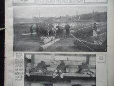 1915 Belgrad erobert
