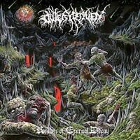 Outer Heaven - Realms Of Eternal Decay (NEW CD)