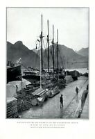 Santa Cruz de Tenerife XL Fotoabb. 1931 Kanarische Inseln Teneriffa Kanaren