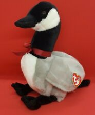 TY 2001 LOOSY the CANADA GOOSE BEANIE BUDDY - MINT with MINT TAGS