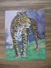 Leopard Print Diana Thorne Bookplate 1937 Unmatted Stunning