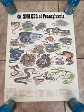 Pennsylvania Fish Commission Snakes Salamander Frogs Turtles Poster Duran Jr Set