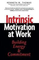 Intrinsic Motivation at Work: What Really Drives Employee Engagement by Thomas,