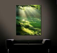 LUZ SOLAR DAY Cuadro Arte Lienzo Pared Decoración Verde Lichtung Natural Bosque