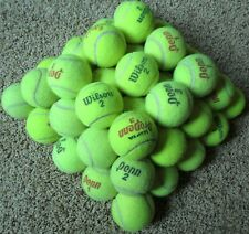 50 Used Practice Tennis Balls or Dog Doggy Fetch Toys Baseballs Bumpers Cricket