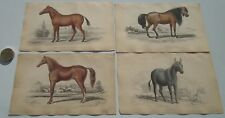 4 OLD ANTIQUE GENUINE RARE 1841 HORSE PRINTS - BY CHARLES HAMILTON SMITH