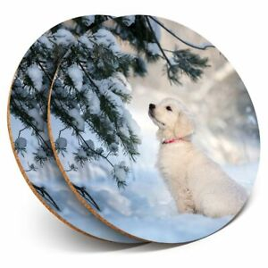2 x Coasters - Golden Retreiver Puppy Labrador Snow  #45175