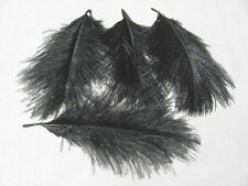 Ostrich Spey Plume Feathers - Black - Fly Tying