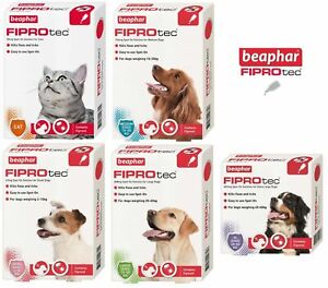 Beaphar FIPROtec Flea Spot On Flea Treatment & Wormclear Wormer for Cats & Dogs
