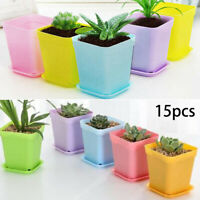 15Pcs Mini Square Pot Garden Succulent Cactus Flower Plant Pots Home
