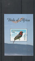 Tanzania 2011 MNH Birds of Africa 1v Sheet I Black-collared Barbet