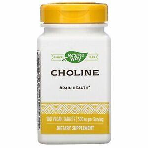 Natures Way Choline 500 mg, 100 Vegan Tablets Brain Health.