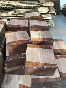 American Walnut Bowl Blank/woodturning/exotic Woods /Exotic Hardwoods/